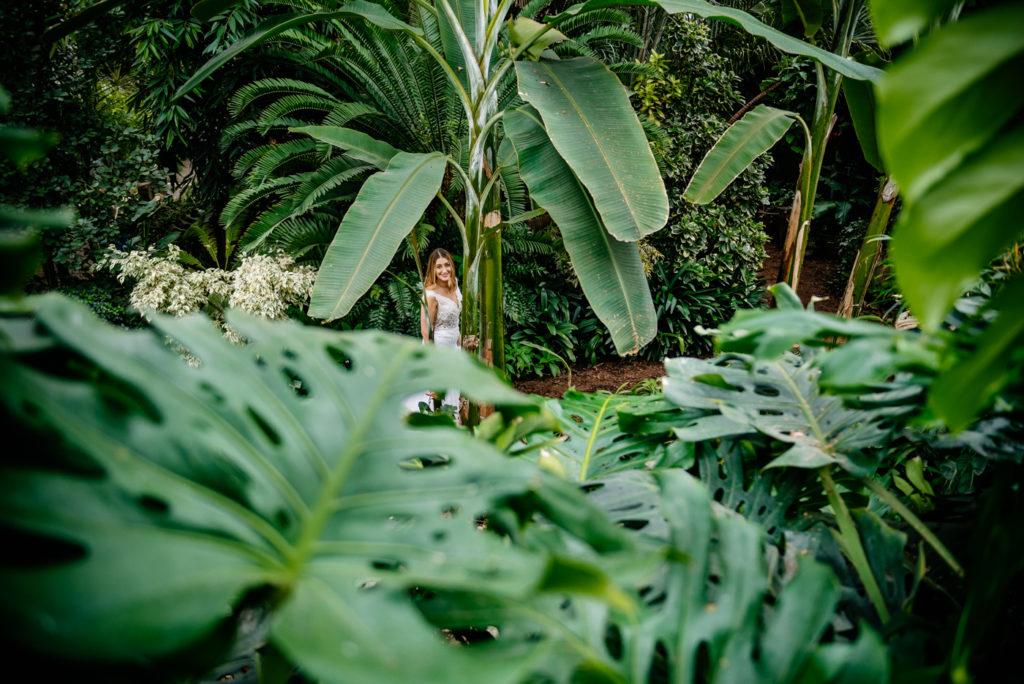w palmiarni